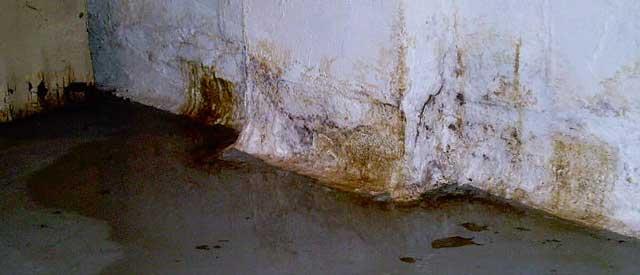 Грунтовые воды могут стать причиной сырости в подвале и разрушения фундамента