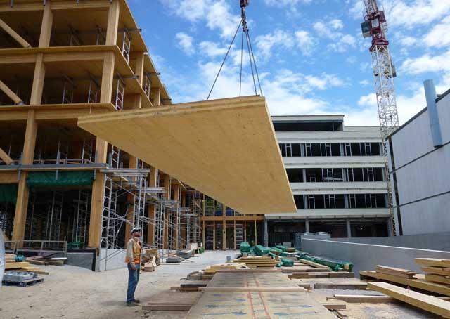 Строительство каркасника промышленных масштабов из дерева
