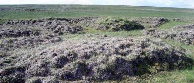 Пучение грунта может разрушить фундамент